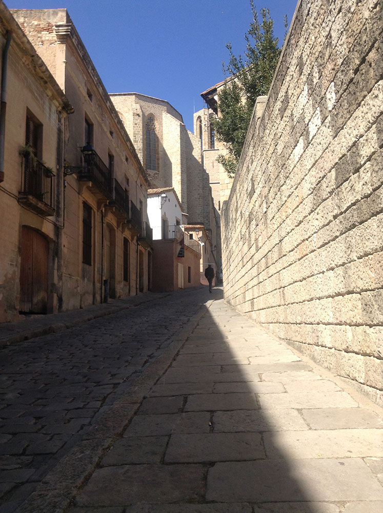 Pedralbes Monastery street